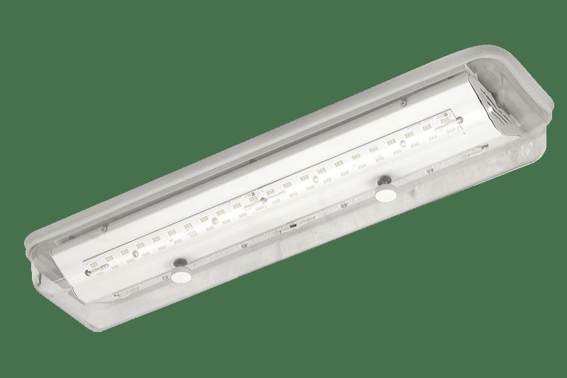 Luminarias para cocina y cuartos fríos